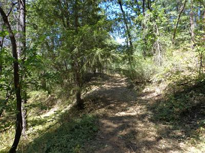 4.42 ACRES FAWN RD, Lakehead, CA 96051 - Photo 2