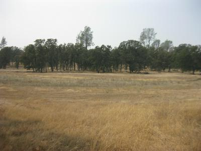 TWO FEATHERS RD., Cottonwood, CA 96022 - Photo 2