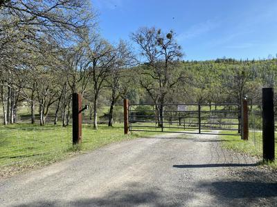 40 ACRES WHITMORE ROAD, Whitmore, CA 96096 - Photo 1