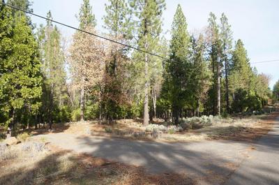 5.02 ACRES WHITMORE RD, Whitmore, CA 96096 - Photo 2