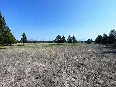 22 ACRES OFF OF BIG SPRINGS RD, Montague, CA 96064 - Photo 2
