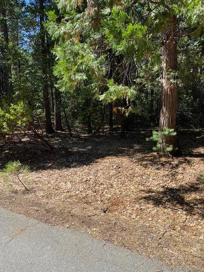 13 WOODRIDGE DR, Shingletown, CA 96088 - Photo 1