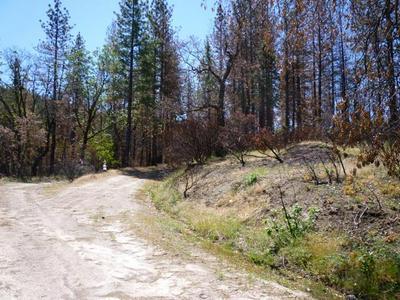 PONDEROSA WAY, Manton, CA 96059 - Photo 2