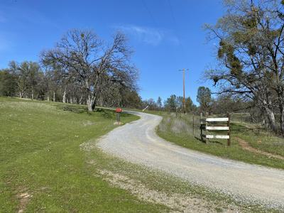 40 ACRES WHITMORE ROAD, Whitmore, CA 96096 - Photo 2