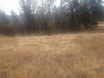 BIG PINES RD, Cottonwood, CA 96022 - Photo 2