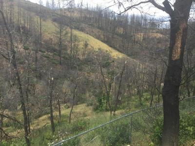 15314 RUGGLES RD, Shasta, CA 96087 - Photo 2