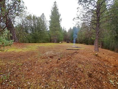 144 ACRES AS 3 PARCELS ON GILMAN ROAD, Lakehead, CA 96051 - Photo 2