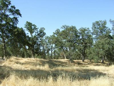 OAK RUN RD, Millville, CA 96062 - Photo 1