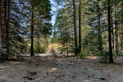 0 DEER FLAT RD, Shingletown, CA 96088 - Photo 2