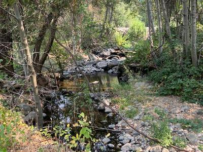 LACK CREEK DR., Shingletown, CA 96088 - Photo 1