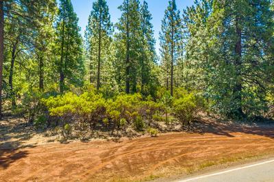 WHITMORE RD, Whitmore, CA 96096 - Photo 1