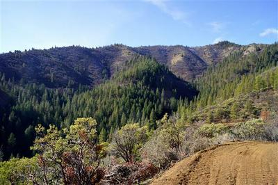 ASH CREEK ROAD, Hornbrook, CA 96044 - Photo 1