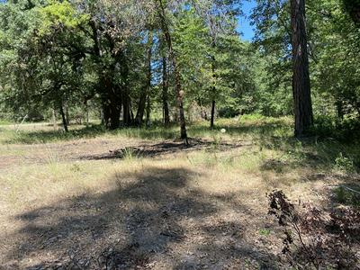 20946 ANTLERS RD, Lakehead, CA 96051 - Photo 1