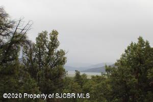 X ROAD 4020, Middle Mesa, NM 81137 - Photo 2