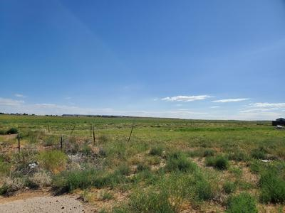 XX ROAD 6406, Kirtland, NM 87417 - Photo 2