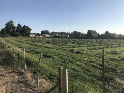 1005 N 1ST ST, Bloomfield, NM 87413 - Photo 2