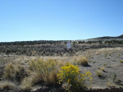 LOT 5 ROAD 3084, Aztec, NM 87410 - Photo 1