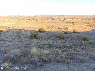 NYA ROAD 5060, Bloomfield, NM 87413 - Photo 1