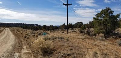 XX ROAD 4000, Middle Mesa, NM 81137 - Photo 1