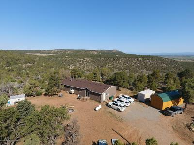 18 ROAD 4010, Middle Mesa, NM 81137 - Photo 1