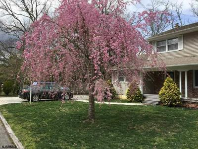 533 MARITA ANN DR, Northfield, NJ 08225 - Photo 2