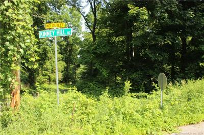 85 KINNEY HILL RD, Washington, CT 06777 - Photo 1
