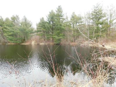 39 PHEASANT RUN, Somers, CT 06071 - Photo 2