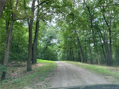 LOT 1 NEW MILFORD EAST ROAD, Bridgewater, CT 06752 - Photo 1