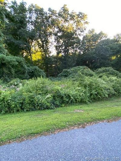 6 OLDE MEADOW RD, Woodstock, CT 06281 - Photo 1
