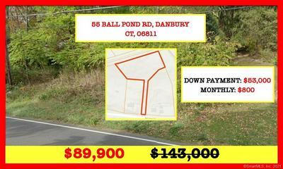 55 BALL POND RD, Danbury, CT 06811 - Photo 1