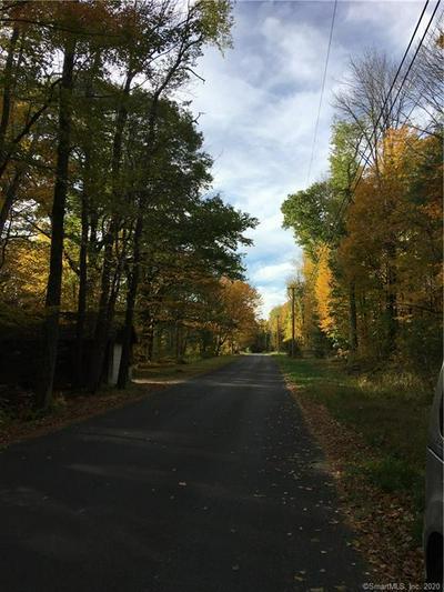 166 HI VIEW RD, Hartland, CT 06065 - Photo 1