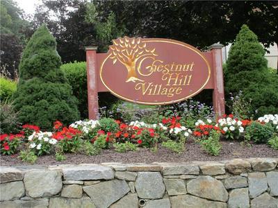 83 CHESTNUT ST APT C, Bethel, CT 06801 - Photo 1