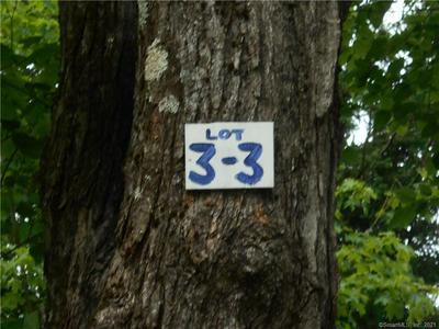 33 NORFOLK RD, Sandisfield, MA 01255 - Photo 2