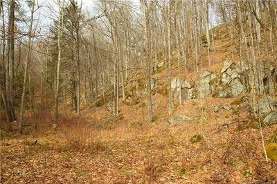 00 UNDER MOUNTAIN ROAD, Canaan, CT 06031 - Photo 1
