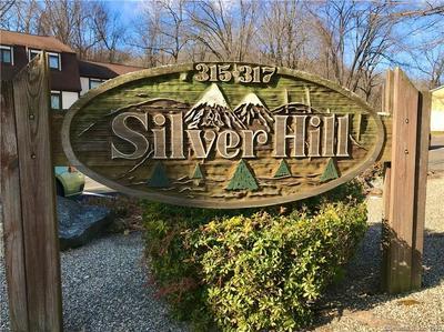 315 SILVER HILL RD APT 14, Derby, CT 06418 - Photo 1