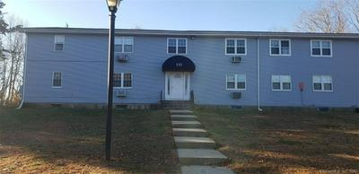 113 HORSE POND RD APT A, Salem, CT 06420 - Photo 1
