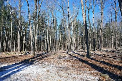 LOT 11 TOWN SOUTH STREET, Cornwall, CT 06753 - Photo 2