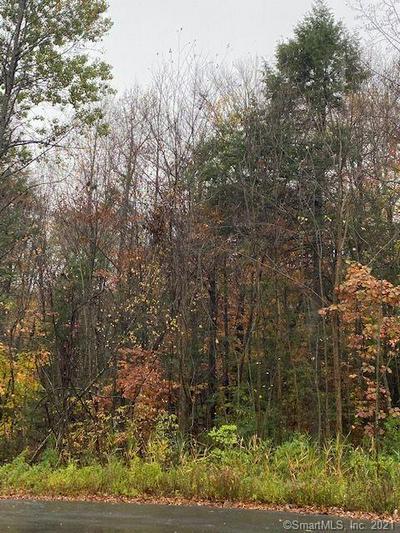 56 WOODHAVEN DR, Burlington, CT 06013 - Photo 1