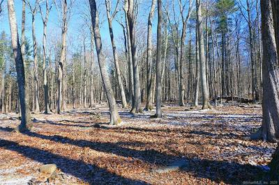 LOT 11 TOWN SOUTH STREET, Cornwall, CT 06753 - Photo 1