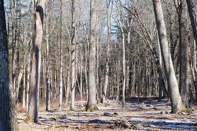 LOT 12 TOWN SOUTH STREET, Cornwall, CT 06753 - Photo 2