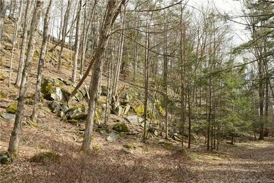 00 UNDER MOUNTAIN ROAD, Canaan, CT 06031 - Photo 2