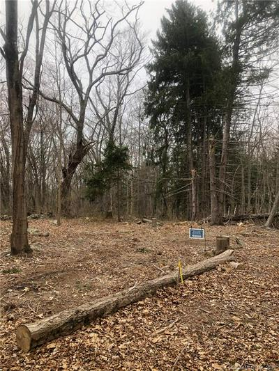 376 STATE ST LOT 3, GUILFORD, CT 06437 - Photo 2