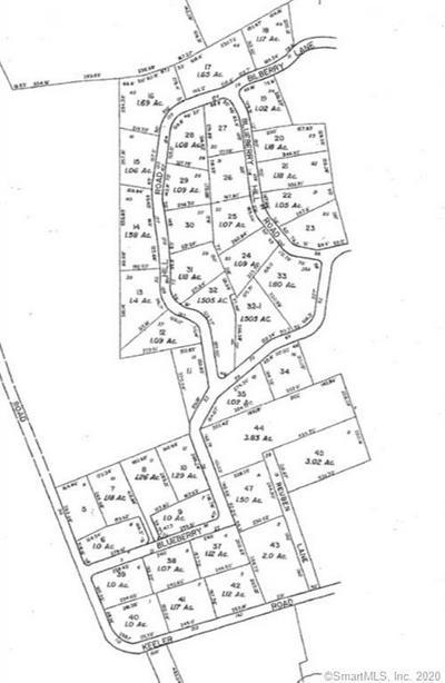190 BLUEBERRY HILL RD, Bridgewater, CT 06752 - Photo 2