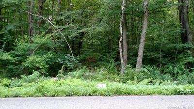 0 WELLS WOOD ROAD, Columbia, CT 06237 - Photo 1