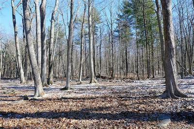 LOT 12 TOWN SOUTH STREET, Cornwall, CT 06753 - Photo 1