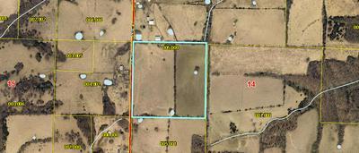 000 POSSUM TROT ROAD, Billings, MO 65610 - Photo 2