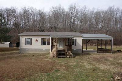 29501 COUNTY ROAD 551A, ELLINGTON, MO 63638 - Photo 1