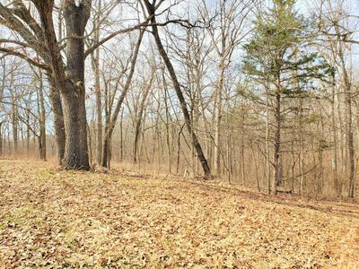 0 PLEASANT VIEW, Highlandville, MO 65669 - Photo 1