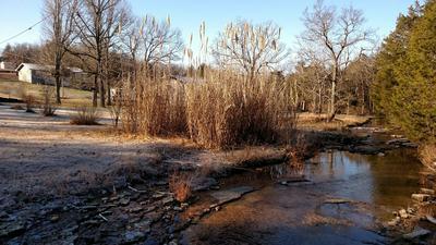 8774 STATE HIGHWAY M, Cedar Creek, MO 65627 - Photo 2