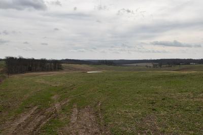 XXXX FARM ROAD 1095, Cassville, MO 65625 - Photo 2